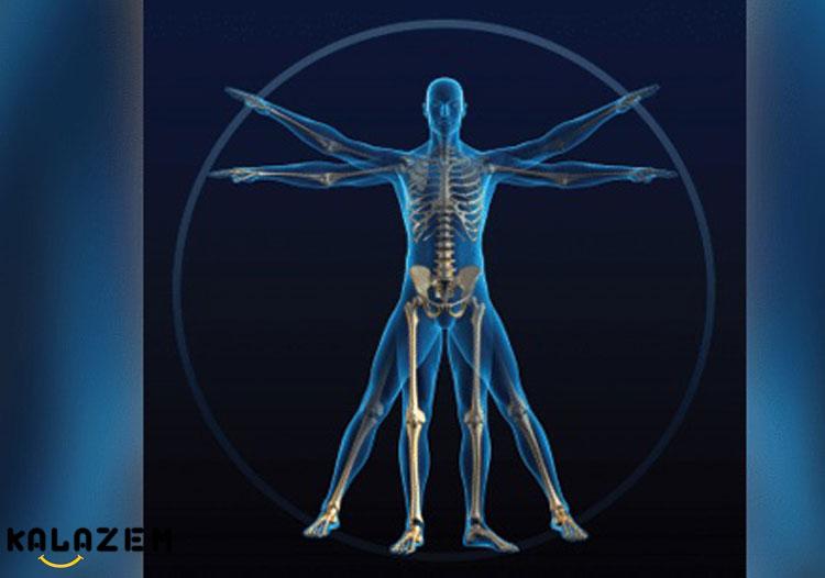 عصب بدن در خواب رفتن دست و پا