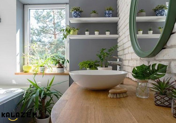 گل و گیاه مناسب حمام